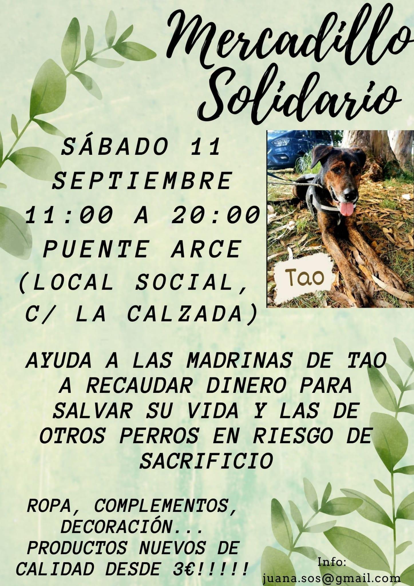 Mercadillo Solidario - Puente Arce