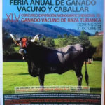 Feria Anual de Ganado Vacuno y Caballar - Ruente